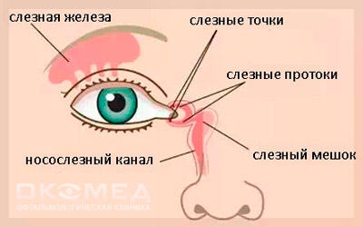 заболевания слезных желез