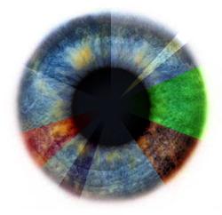 Дальнозоркость упражнения глаз детей